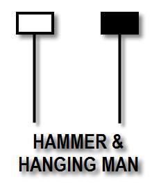 pola-hammer