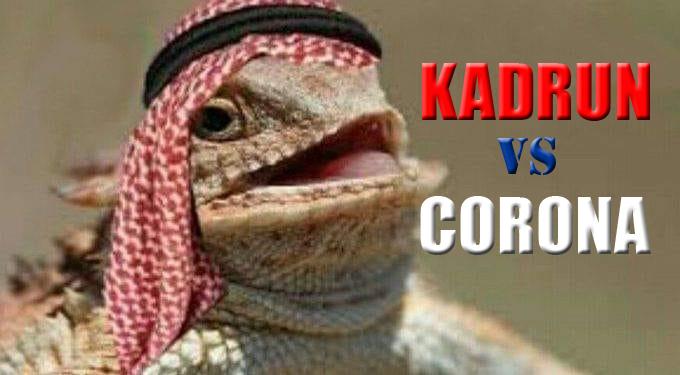 Kadrun vs corona